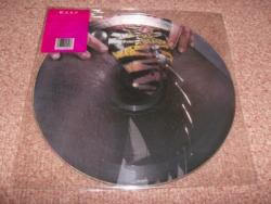 ANIMAL US 12INCH PIC DISC