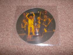 BANDS PIC DISC SIGNED X1