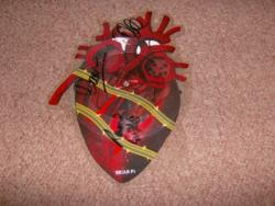 BRIAR HEART PDISC SIGNED