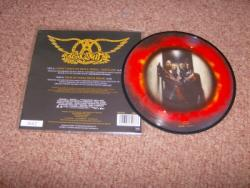 DONT MISS A THING PIC DISC
