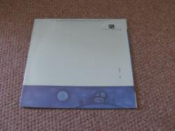 DRY LAND 10INCH CLEAR VINYL PS
