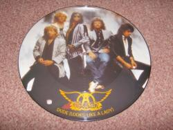 DUDE 12INCH PIC DISC