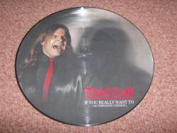 IF YOU REALLY WANT TO PIC DISC