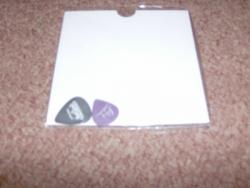 TESTAMENT PLECTRUMS X2